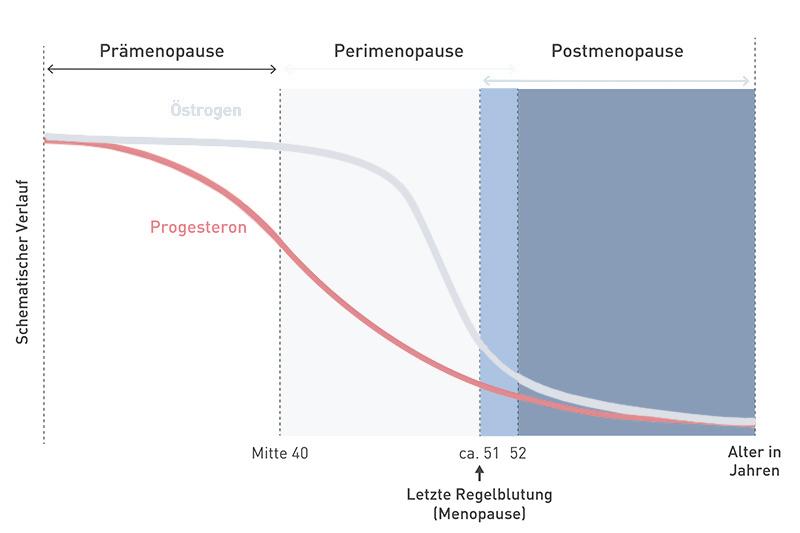 Progesteronspiegel in den Wechseljahren